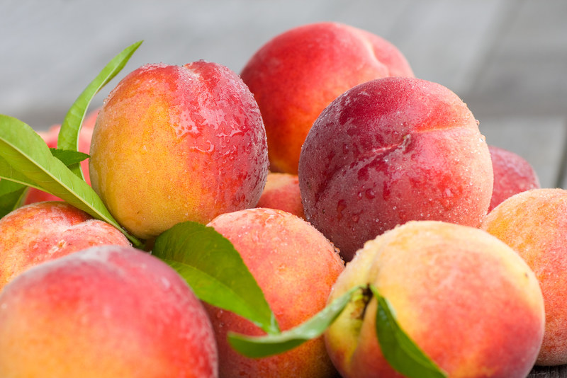 Can Dogs Eat Peach?